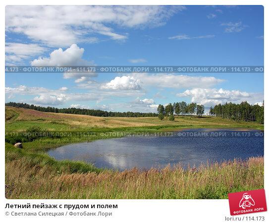 Летний пейзаж с прудом и полем, фото № 114173, снято 21 июля 2007 г. (c) Светлана Силецкая / Фотобанк Лори