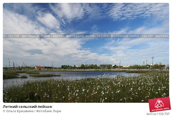 Летний сельский пейзаж, фото № 133737, снято 17 июля 2006 г. (c) Ольга Красавина / Фотобанк Лори