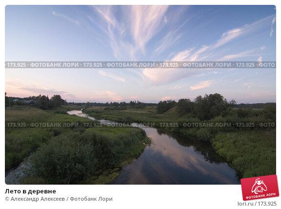 Купить «Лето в деревне», эксклюзивное фото № 173925, снято 5 августа 2007 г. (c) Александр Алексеев / Фотобанк Лори