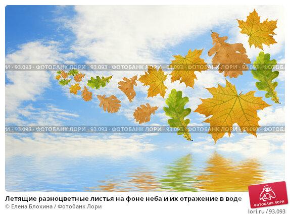 Летящие разноцветные листья на фоне неба и их отражение в воде, фото № 93093, снято 22 сентября 2007 г. (c) Елена Блохина / Фотобанк Лори
