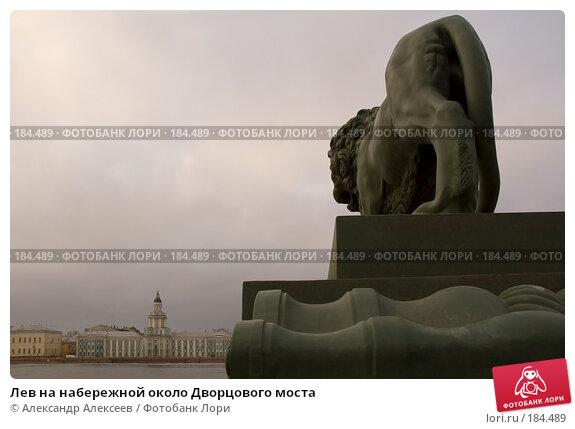 Лев на набережной около Дворцового моста, эксклюзивное фото № 184489, снято 14 марта 2007 г. (c) Александр Алексеев / Фотобанк Лори