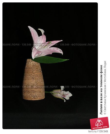 Лилия в вазе на темном фоне, фото № 139549, снято 23 марта 2017 г. (c) Светлана Кучинская / Фотобанк Лори