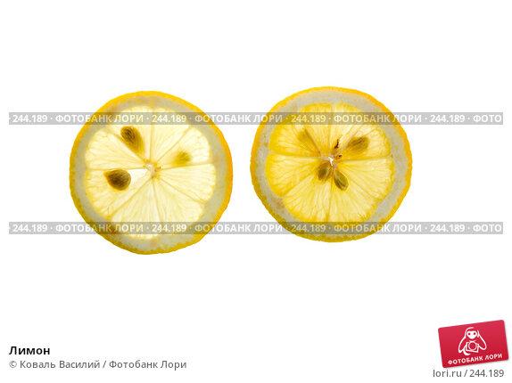 Купить «Лимон», фото № 244189, снято 21 марта 2008 г. (c) Коваль Василий / Фотобанк Лори