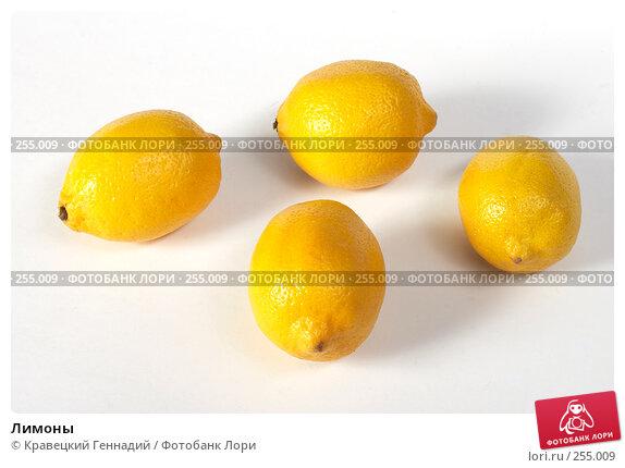 Купить «Лимоны», фото № 255009, снято 24 сентября 2004 г. (c) Кравецкий Геннадий / Фотобанк Лори