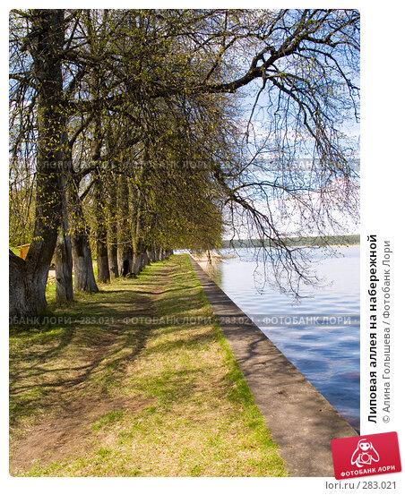 Липовая аллея на набережной, эксклюзивное фото № 283021, снято 10 мая 2008 г. (c) Алина Голышева / Фотобанк Лори