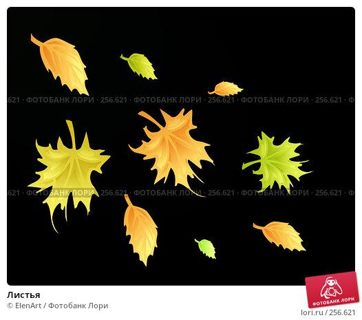Листья, иллюстрация № 256621 (c) ElenArt / Фотобанк Лори