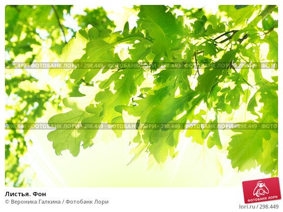 Листья. Фон, фото № 298449, снято 25 мая 2008 г. (c) Вероника Галкина / Фотобанк Лори