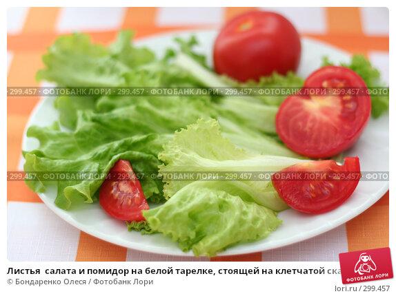 Листья  салата и помидор на белой тарелке, стоящей на клетчатой скатерти, фото № 299457, снято 7 мая 2008 г. (c) Бондаренко Олеся / Фотобанк Лори
