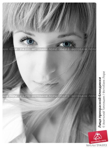 Лицо прекрасной блондинки, фото № 314013, снято 7 июня 2008 г. (c) Анатолий Типляшин / Фотобанк Лори