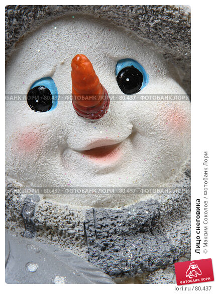 Лицо снеговика, фото № 80437, снято 10 августа 2007 г. (c) Максим Соколов / Фотобанк Лори