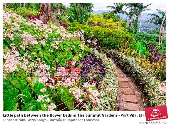 Little path between the flower beds in The Summit Gardens - Port Vila, Efate Island, Vanuatu. Стоковое фото, фотограф Zoonar.com/Laszlo Konya / age Fotostock / Фотобанк Лори