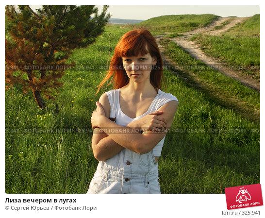 Лиза вечером в лугах, фото № 325941, снято 22 июня 2005 г. (c) Сергей Юрьев / Фотобанк Лори