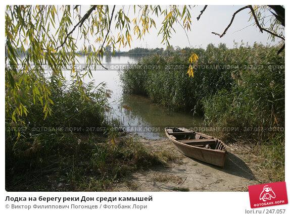 Лодка на берегу реки Дон среди камышей, фото № 247057, снято 13 октября 2007 г. (c) Виктор Филиппович Погонцев / Фотобанк Лори