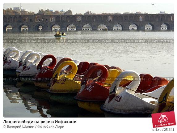 Лодки-лебеди на реке в Исфахане, фото № 25641, снято 29 ноября 2006 г. (c) Валерий Шанин / Фотобанк Лори