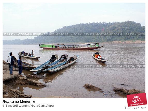 Лодки на Меконге, фото № 273957, снято 6 декабря 2007 г. (c) Валерий Шанин / Фотобанк Лори