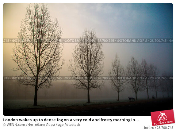 Купить «London wakes up to dense fog on a very cold and frosty morning in Finsbury Park, north London. Where: London, United Kingdom When: 28 Dec 2016 Credit: WENN.com», фото № 28700745, снято 28 декабря 2016 г. (c) age Fotostock / Фотобанк Лори