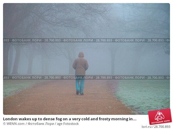 Купить «London wakes up to dense fog on a very cold and frosty morning in Finsbury Park, north London. Where: London, United Kingdom When: 28 Dec 2016 Credit: WENN.com», фото № 28700893, снято 28 декабря 2016 г. (c) age Fotostock / Фотобанк Лори