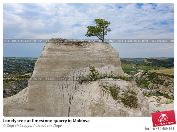 Lonely tree at limestone quarry in Moldova. Стоковое фото, фотограф Сергей Старуш / Фотобанк Лори
