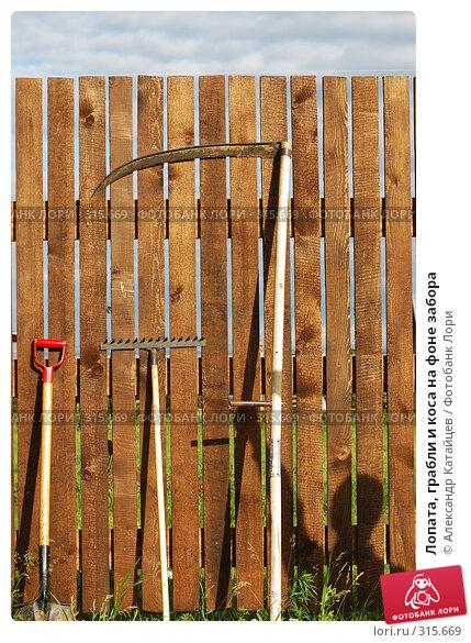 Лопата, грабли и коса на фоне забора, фото № 315669, снято 8 июня 2008 г. (c) Александр Катайцев / Фотобанк Лори