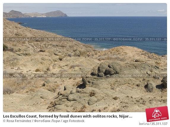 Los Escullos Coast, formed by fossil dunes with oolitos rocks, Nijar... Стоковое фото, фотограф Rosa Fernández / age Fotostock / Фотобанк Лори