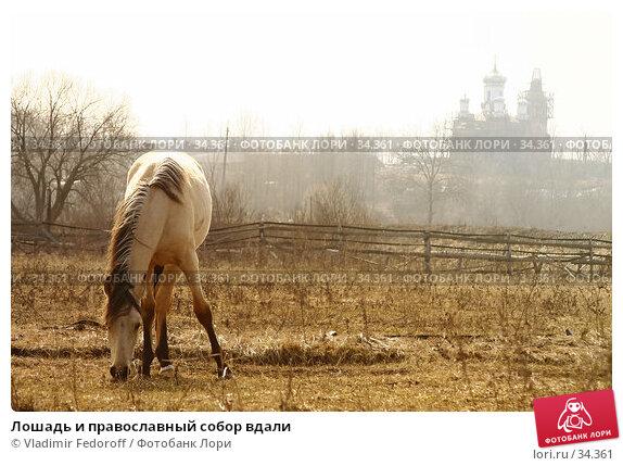 Лошадь и православный собор вдали, фото № 34361, снято 16 апреля 2006 г. (c) Vladimir Fedoroff / Фотобанк Лори