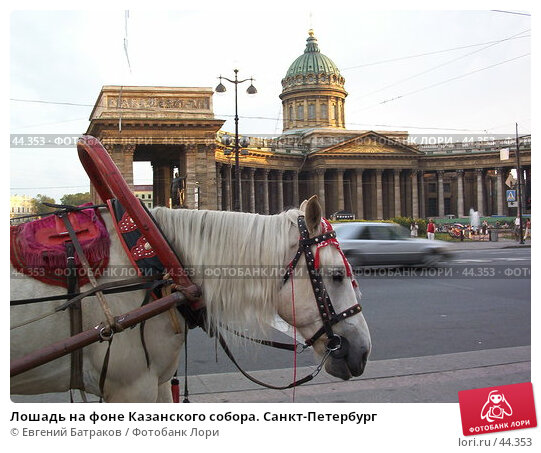 Лошадь на фоне Казанского собора. Санкт-Петербург, фото № 44353, снято 3 августа 2003 г. (c) Евгений Батраков / Фотобанк Лори