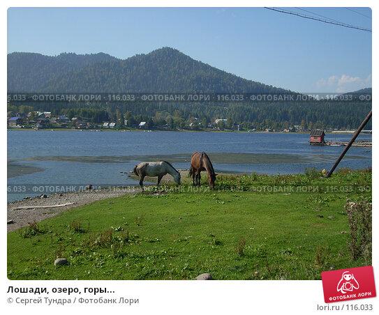 Лошади, озеро, горы..., фото № 116033, снято 1 сентября 2007 г. (c) Сергей Тундра / Фотобанк Лори