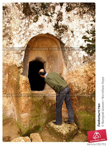 Любопытство, фото № 23713, снято 5 ноября 2006 г. (c) Валерий Шанин / Фотобанк Лори