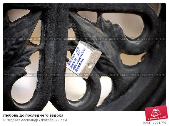 Любовь до последнего вздоха, фото № 271797, снято 17 марта 2008 г. (c) Недорез Александр / Фотобанк Лори