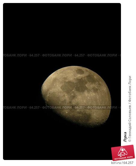 Луна, фото № 64257, снято 25 июня 2007 г. (c) Геннадий Соловьев / Фотобанк Лори