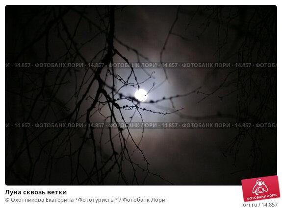 Луна сквозь ветки, фото № 14857, снято 5 ноября 2006 г. (c) Охотникова Екатерина *Фототуристы* / Фотобанк Лори