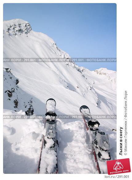 Купить «Лыжи в снегу», фото № 291001, снято 8 февраля 2007 г. (c) Максим Горпенюк / Фотобанк Лори