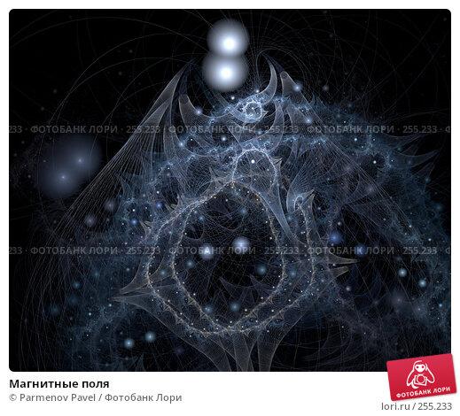 Магнитные поля, иллюстрация № 255233 (c) Parmenov Pavel / Фотобанк Лори