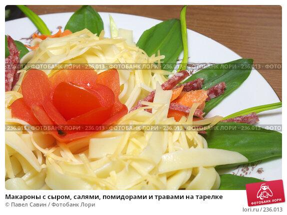 Макароны с сыром, салями, помидорами и травами на тарелке, фото № 236013, снято 28 марта 2017 г. (c) Павел Савин / Фотобанк Лори