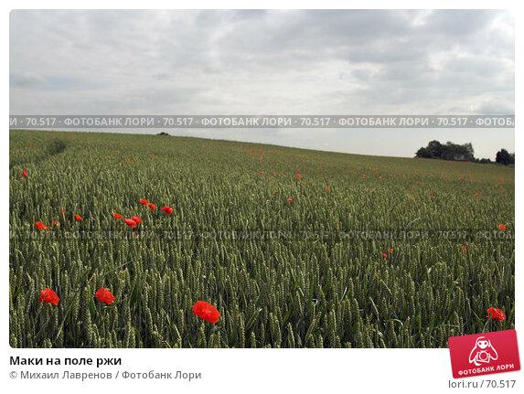 Маки на поле ржи, фото № 70517, снято 20 июня 2006 г. (c) Михаил Лавренов / Фотобанк Лори