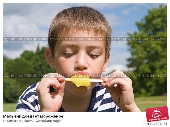 Купить «Мальчик доедает мороженое», фото № 324181, снято 15 июня 2008 г. (c) Tamara Kulikova / Фотобанк Лори