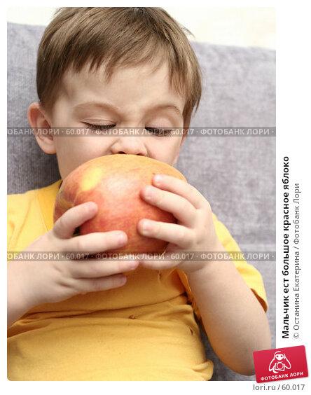 Мальчик ест большое красное яблоко, фото № 60017, снято 11 апреля 2007 г. (c) Останина Екатерина / Фотобанк Лори