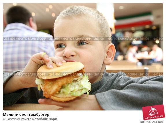 Мальчик ест гамбургер, фото № 261001, снято 20 июля 2017 г. (c) Losevsky Pavel / Фотобанк Лори