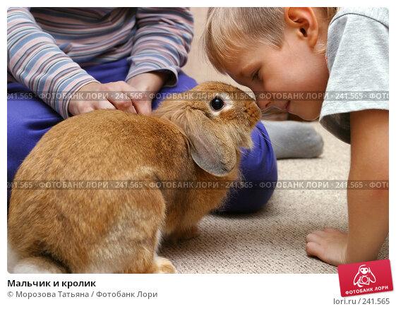 Мальчик и кролик, фото № 241565, снято 13 сентября 2006 г. (c) Морозова Татьяна / Фотобанк Лори