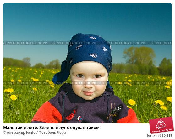 Мальчик и лето. Зеленый луг с одуванчиком, фото № 330113, снято 23 марта 2017 г. (c) Александр Fanfo / Фотобанк Лори