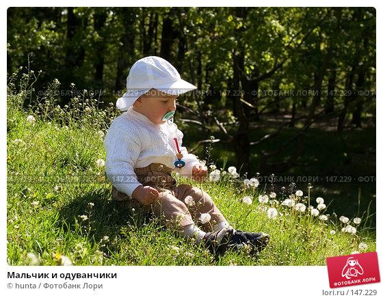 Мальчик и одуванчики, фото № 147229, снято 13 мая 2005 г. (c) hunta / Фотобанк Лори