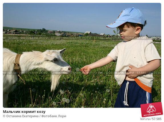 Мальчик кормит козу, фото № 57585, снято 9 июня 2006 г. (c) Останина Екатерина / Фотобанк Лори