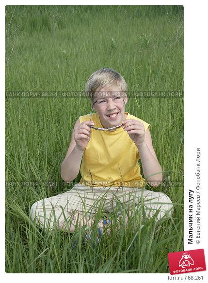 Мальчик на лугу, фото № 68261, снято 11 июня 2007 г. (c) Евгений Мареев / Фотобанк Лори