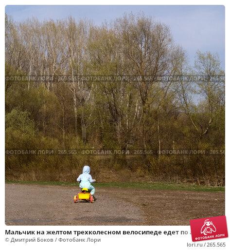 Купить «Мальчик на желтом трехколесном велосипеде едет по асфальтированной дороге по деревне», фото № 265565, снято 20 апреля 2008 г. (c) Дмитрий Боков / Фотобанк Лори