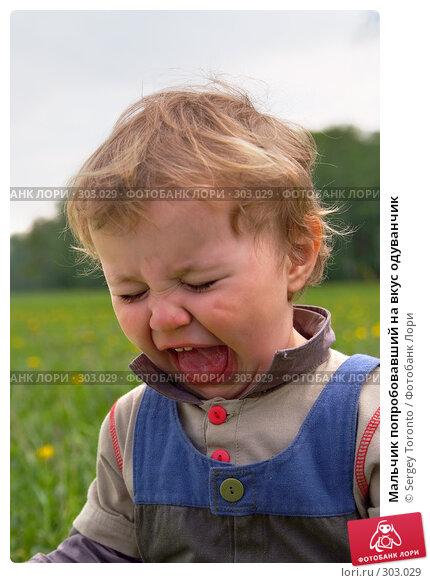 Мальчик попробовавший на вкус одуванчик, фото № 303029, снято 11 мая 2008 г. (c) Sergey Toronto / Фотобанк Лори