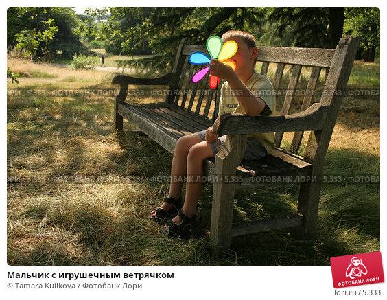 Купить «Мальчик с игрушечным ветрячком», фото № 5333, снято 1 июля 2006 г. (c) Tamara Kulikova / Фотобанк Лори