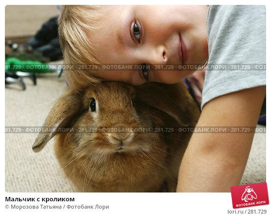 Купить «Мальчик с кроликом», фото № 281729, снято 13 сентября 2006 г. (c) Морозова Татьяна / Фотобанк Лори