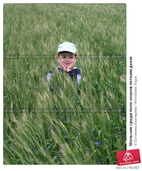 Мальчик среди поле злаков летним днем, фото № 56057, снято 22 июня 2007 г. (c) Останина Екатерина / Фотобанк Лори