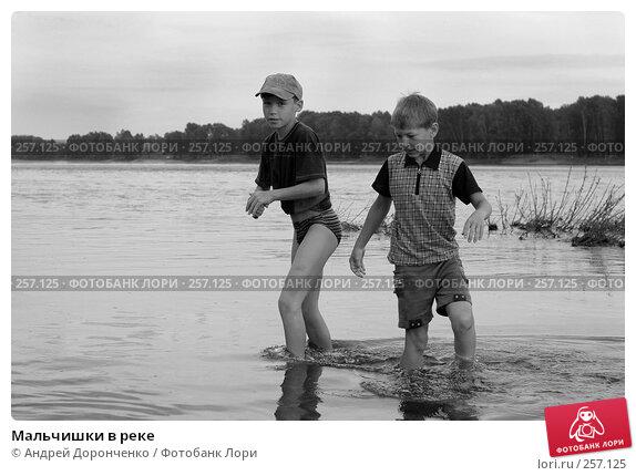 Купить «Мальчишки в реке», фото № 257125, снято 14 июня 2005 г. (c) Андрей Доронченко / Фотобанк Лори