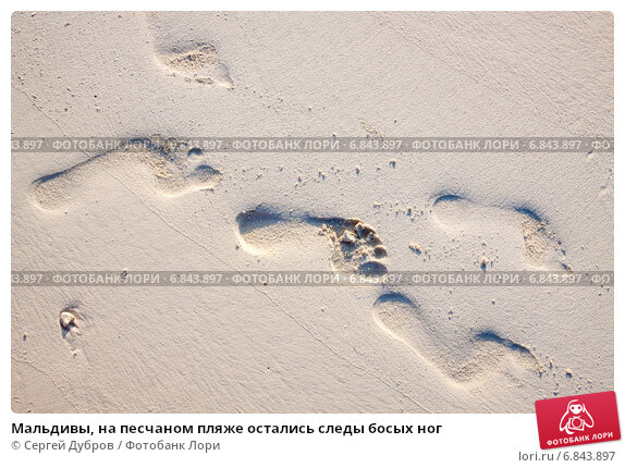Купить «Мальдивы, на песчаном пляже остались следы босых ног», фото № 6843897, снято 5 февраля 2013 г. (c) Сергей Дубров / Фотобанк Лори